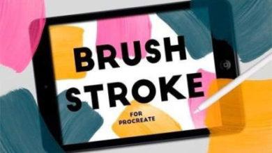 BRUSH STROKE STAMPS FOR PROCREATE Picgiraffe.com 292