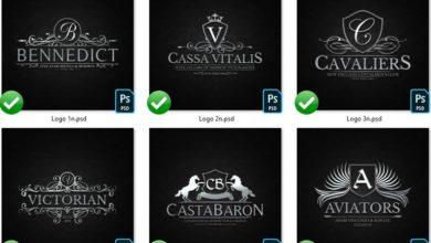 Photo of elements heraldic crest logos set 4