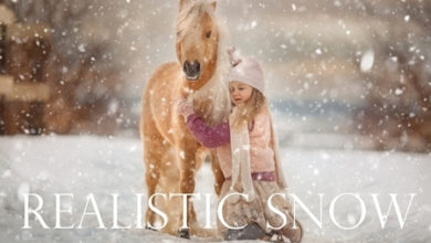Realistic Snow Overlays 4405059a Free Download Picgiraffe.com