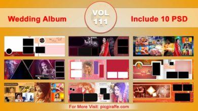 Wedding Album Design Psd Templates 12x36 VOL 111 Free Download Picgiraffe.com