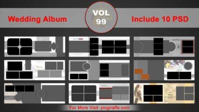 Wedding Album Design Psd Templates 12x36 VOL 99 Free Download Picgiraffe.com