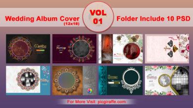 12x18 DM Wedding Album Cover Design VOL 1 Free Download Picgiraffe.com