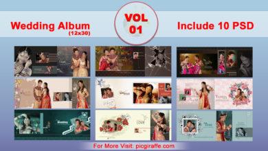 12x30 Wedding Album Design Psd Templates VOL 1 Free Download Picgiraffe.com
