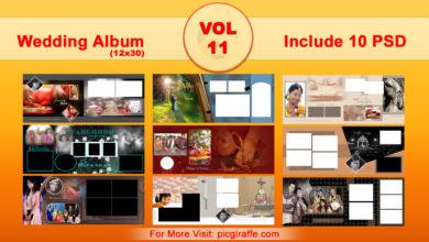 12x30 Wedding Album Design Psd Templates VOL 11 Free Download Picgiraffe.com