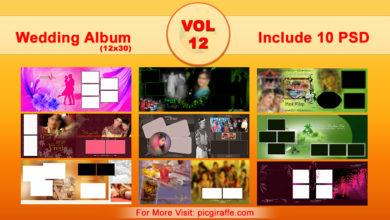 12x30 Wedding Album Design Psd Templates VOL 12 Free Download Picgiraffe.com