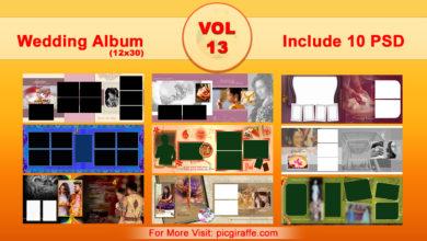 12x30 Wedding Album Design Psd Templates VOL 13 Free Download Picgiraffe.com