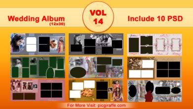 12x30 Wedding Album Design Psd Templates VOL 14 Free Download Picgiraffe.com