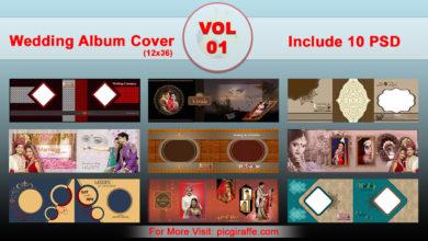 12x36 DM Wedding Album Cover Design VOL 1 Free Download Picgiraffe.com