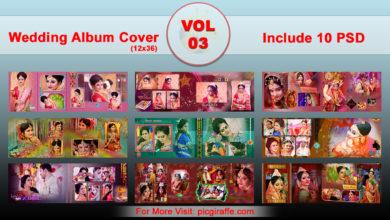 12x36 DM Wedding Album Cover Design VOL 3 Free Download Picgiraffe.com