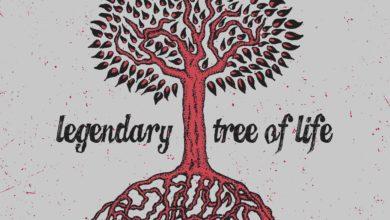 Photo of 4 Legendary tree of life Summer SALE tree