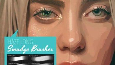 Haze Long Procreate Smudge Brushes Free Download Picgiraffe.com