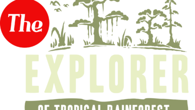 Photo of Rain forest Explorer T shirt Design