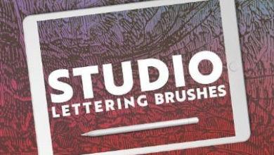 12 Lettering Brushes For Procreate Free Download Picgiraffe.com