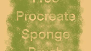 Sponge Brush Procreate Free Download Picgiraffe.com