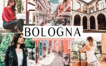Photo of Bologna Lightroom Presets Pack 4160109