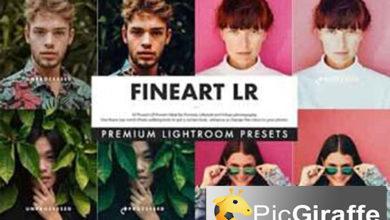 Photo of Fineart Lightroom Presets 3514168