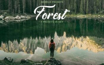 Photo of Forest Mobile Presets 4032353