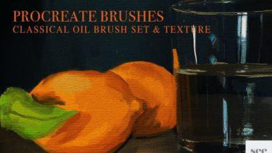 procreate oil brush set texture free download picgiraffe.com