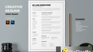 resume cv template pro n86fkpw free download picgiraffe.com